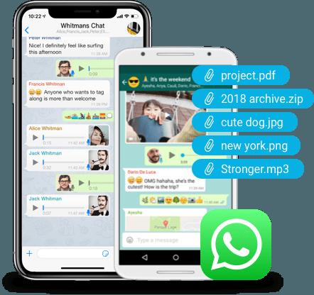 free whatsapp backup tool